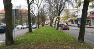 Ulica Św. Jana Pawła II wypięknieje. Jeszcze przed wakacjami nasadzenia roślin ozdobnych. Będą podświetlone