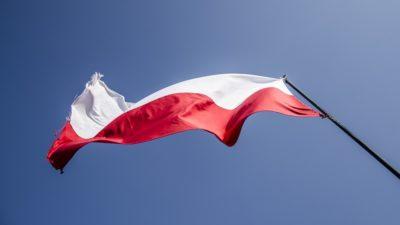 Przed 11 listopada. Podpowiadamy gdzie w Kołobrzegu kupić flagę narodową i za ile