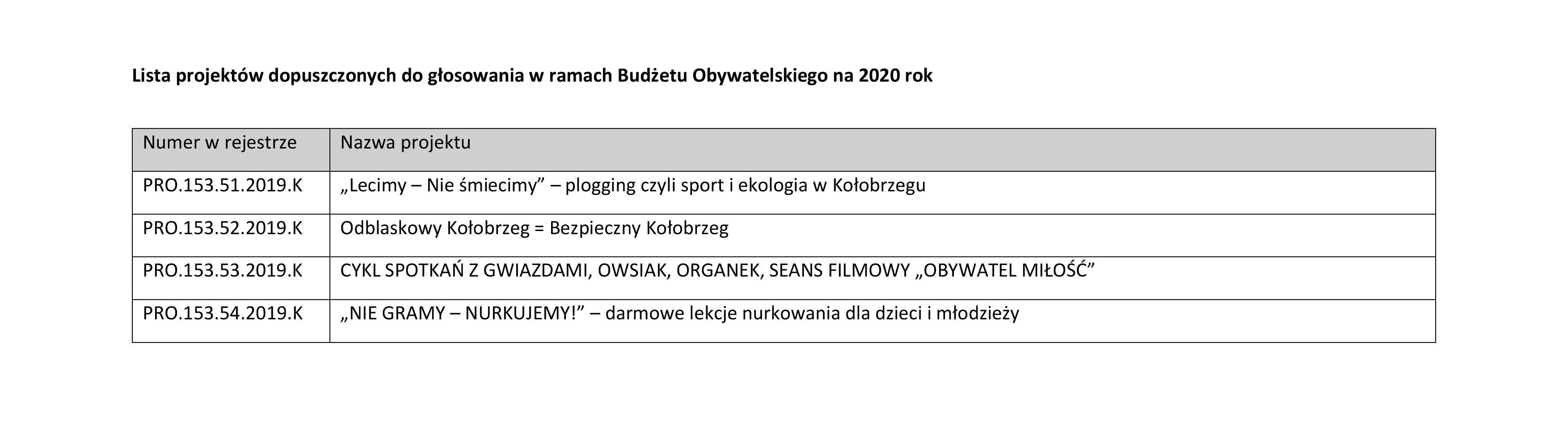 0003 e1570011954413 - Jakie projekty wpłynęły do Budżetu Obywatelskiego? Jest m.in. Jadłodzielnia i interaktywny plac zabaw przy Frankowskiego (lista)