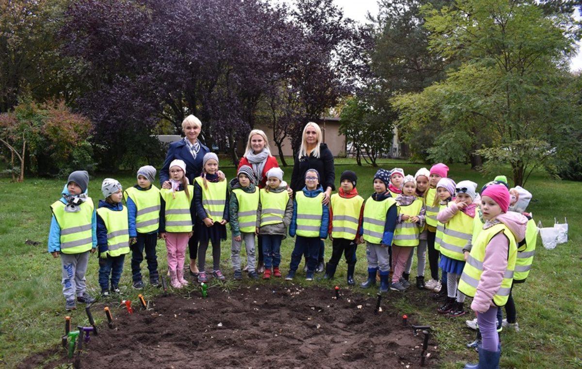 Dzieci zasadziły dziś dwa tysiące cebulek żonkili. Wiosną zostaną przeznaczone na hospicyjną akcję Pola Nadziei