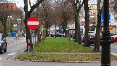 Dużo drzew w mieście jest chorych lub już obumarłych i kwalifikuje się do wycinki. Z centrum może ich sporo ubyć