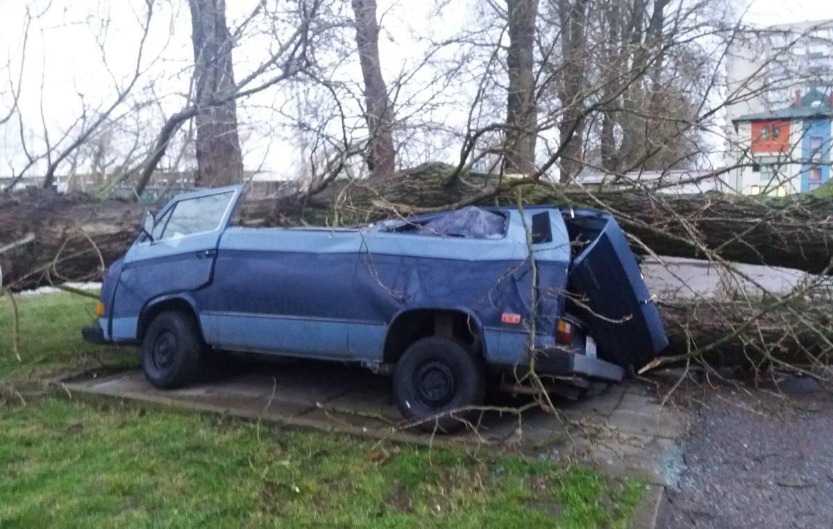 46 interwencji Straży Pożarnej. Przy ul. Zygmuntowskiej drzewo spadło na samochody