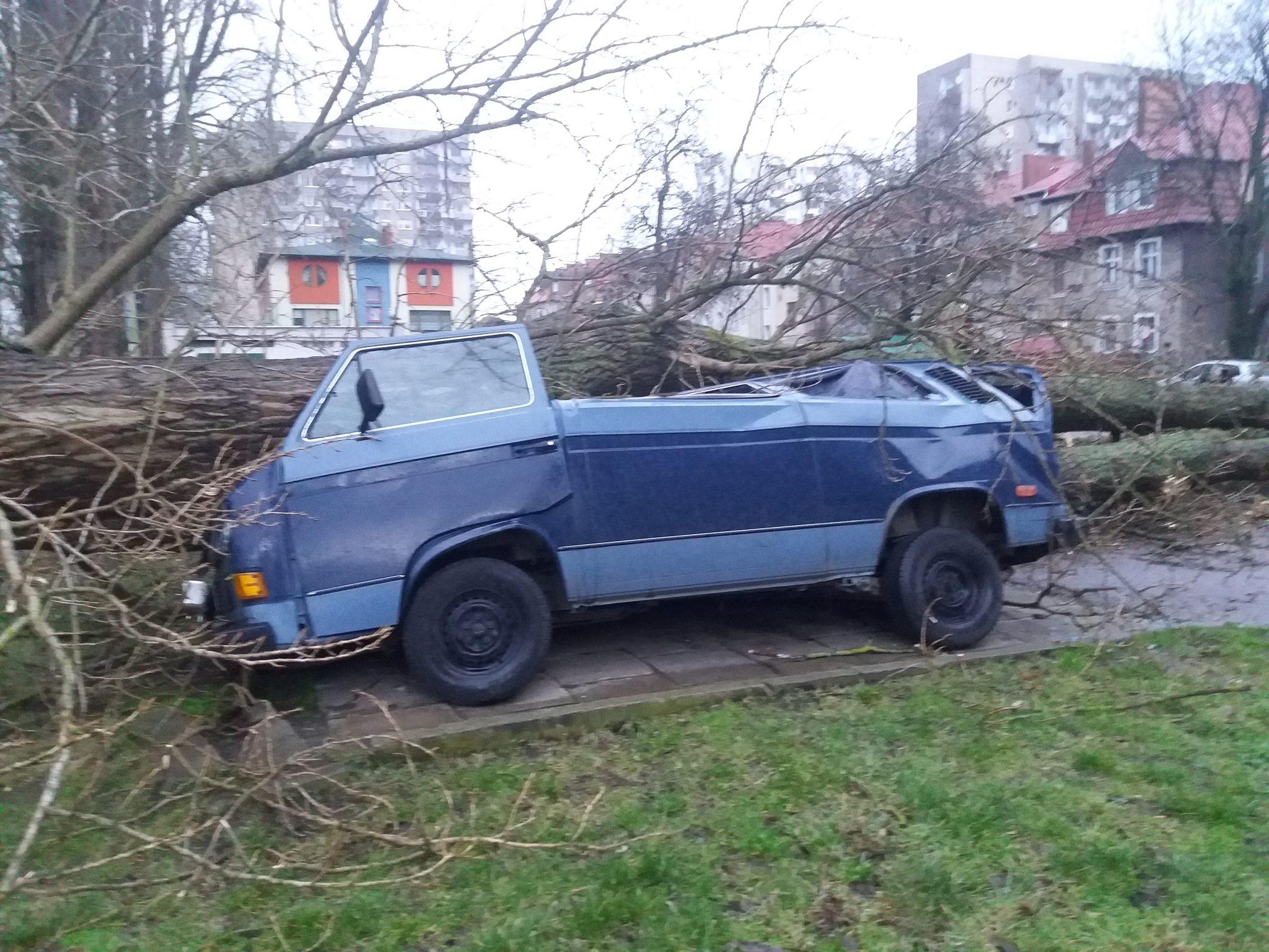 sabina7 - 46 interwencji Straży Pożarnej. Przy ul. Zygmuntowskiej drzewo spadło na samochody