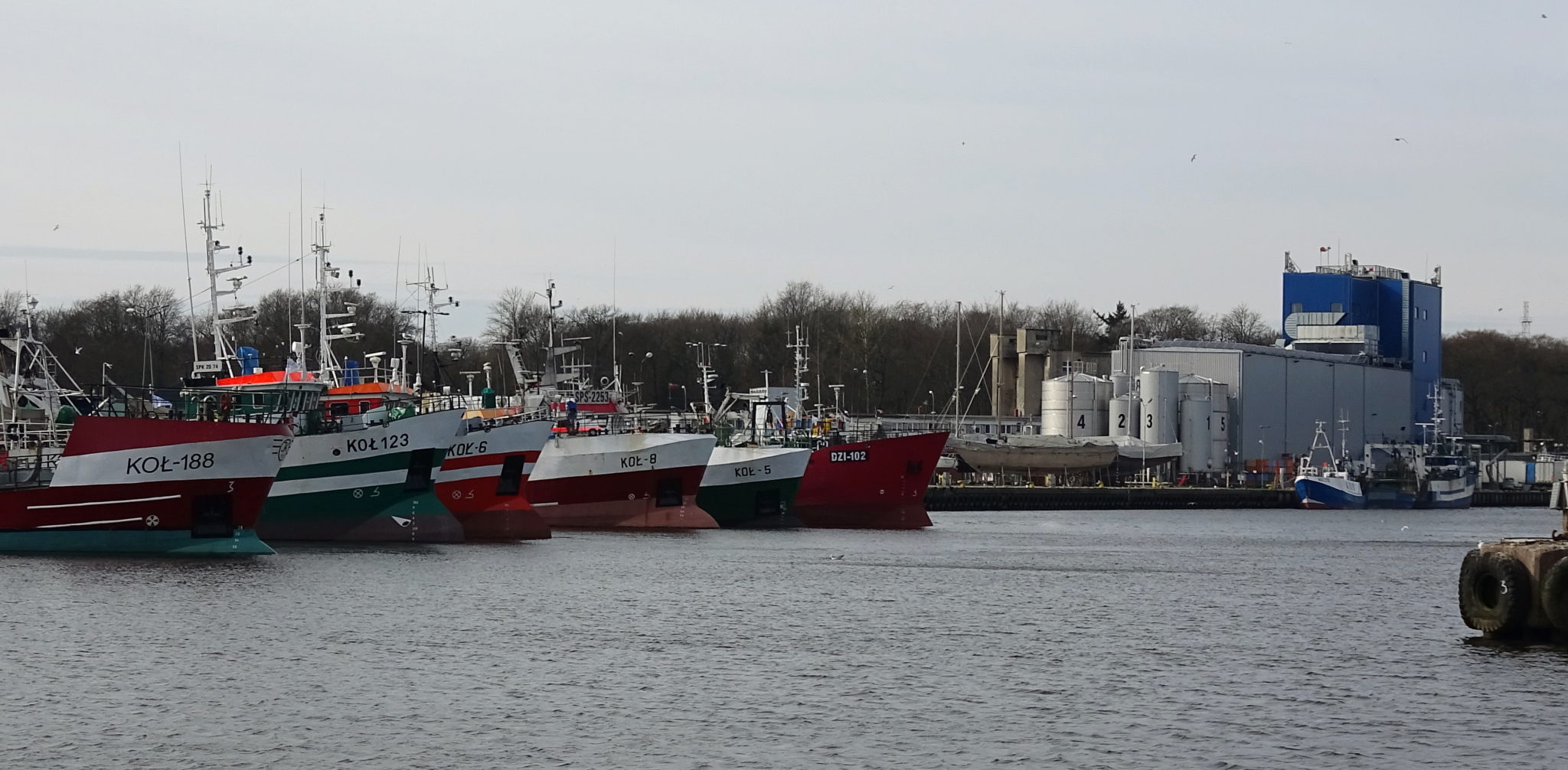 3 - Kutry powracające do kołobrzeskiego portu nie muszą obawiać się kwarantanny. Pod jednym warunkiem
