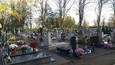 """Komunikat Zieleni Miejskiej. """"Powstrzymajmy się teraz od porządkowania i dekorowania grobów"""""""