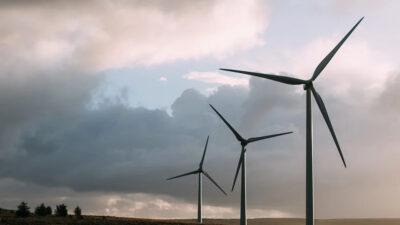 Trybunał Konstytucyjny przyznał rację gminie Dygowo ws. podatku od farm wiatrowych. Gmina odzyska 4 mln zł?