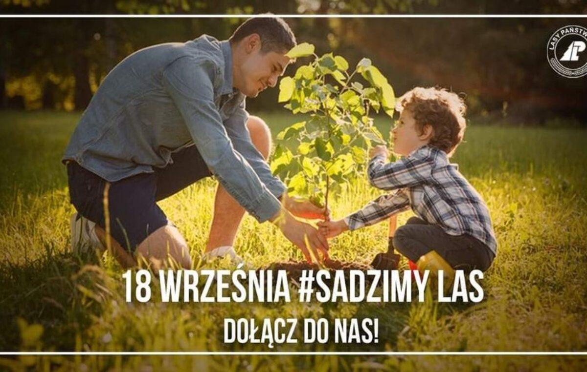 18 września sadzimy las! Nadleśnictwo Gościno będzie rozdawać sadzonki