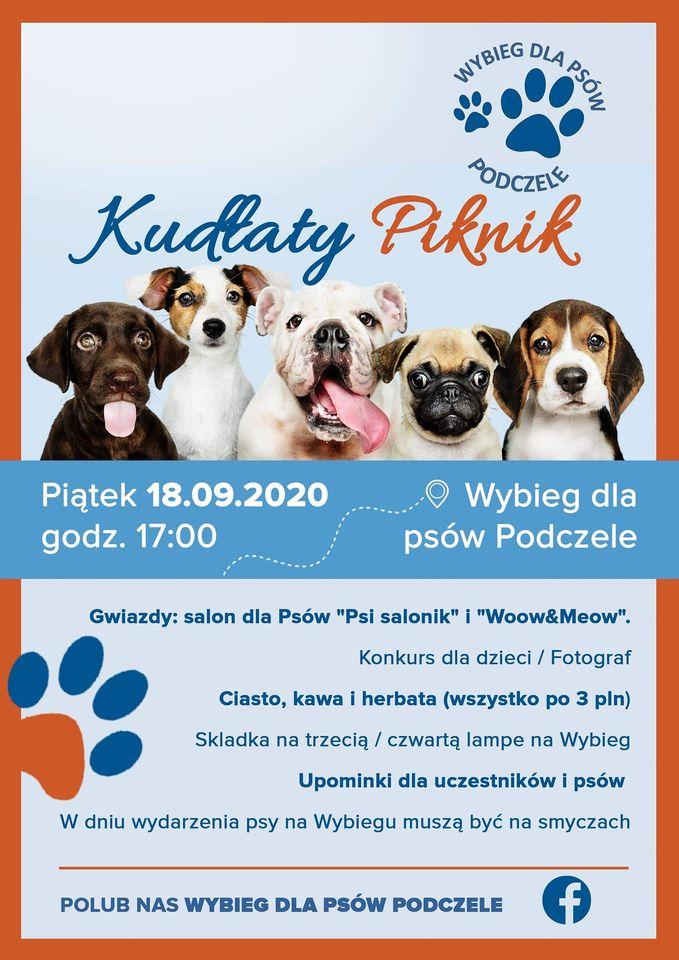 piknik - Sympatyczne: Kudłaty Piknik na osiedlu Podczele
