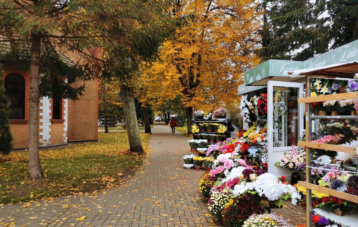 Miasto pomoże handlowcom spod cmentarza. Odkupi od nich kwiaty, których nie sprzedali z powodu zamknięcia cmentarza