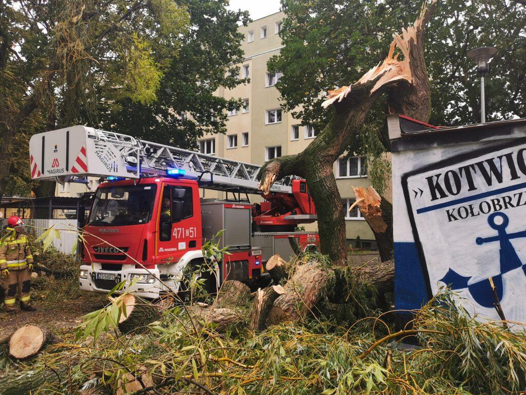 straż pożarna 2 1 1024x768 - Duże drzewo złamało się pod naporem silnego wiatru. Upadając uszkodziło cztery parkujące obok samochody (ZDJĘCIA)