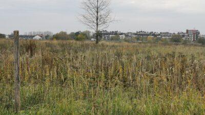Przetarg na budowę miejskiego osiedla ogłoszony. Firmy zainteresowane zleceniem mogą składać oferty do 1 grudnia