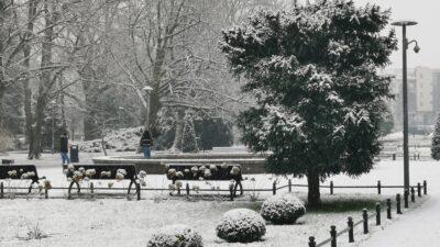 Biały Nowy Rok. Zobacz piękny Kołobrzeg w zimowej szacie (ZDJĘCIA, WIDEO)