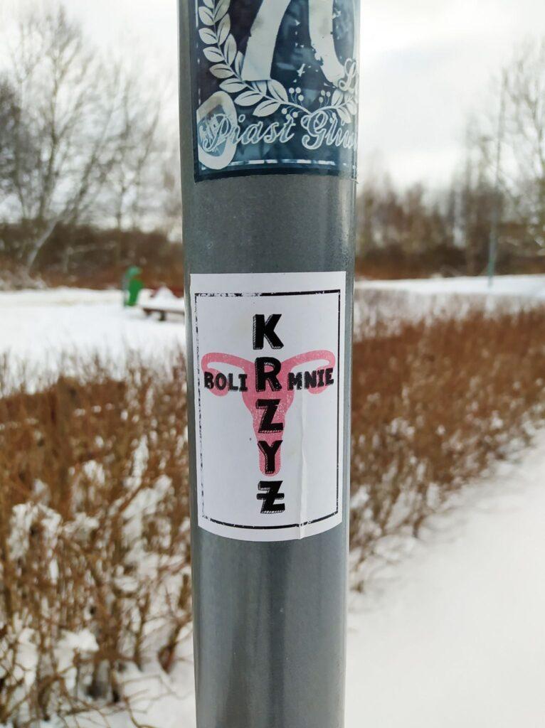 sk3 766x1024 - Wlepki, plakaty, odręcznie pisane hasła. Protestujący po orzeczeniu TK ws. aborcji nie pozwalają zapomnieć (ZDJĘCIA)