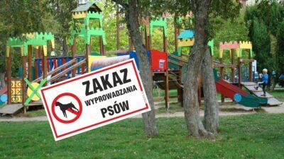 """Zwierzęce """"miny"""" na placach zabaw. Radna chce ustawienia tabliczek zakazujących wstępu na nie ze zwierzętami"""