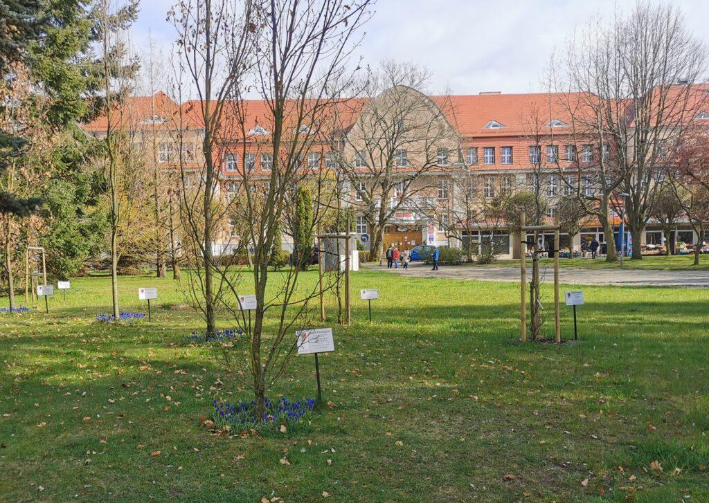 seby2 1024x727 - Pomnik upamiętniający ofiary Zbrodni Katyńskiej stanie na skwerze w centrum miasta? 7 maja ruszają konsultacje