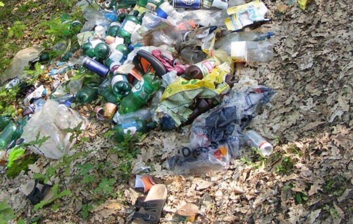 Fotopułapki pomogą w walce z nielegalnym wyrzucaniem śmieci w gminie Ustronie Morskie