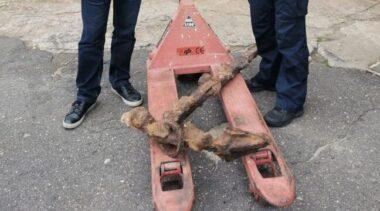 Zabytkowa kotwica trafiła na sprzedaż w Internecie. Dzięki dochodzeniu policji jest teraz w kołobrzeskim muzeum
