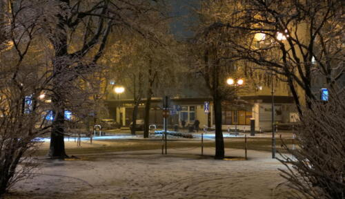 14 (1) (1) (1) (1) (1) (1) (1) (1) (1) - Dziś wieczorem sypnęło śniegiem... (GALERIA ZDJĘĆ)