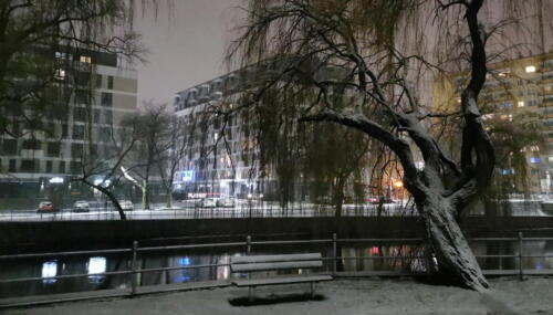 2 (1) (1) (1) (1) - Dziś wieczorem sypnęło śniegiem... (GALERIA ZDJĘĆ)