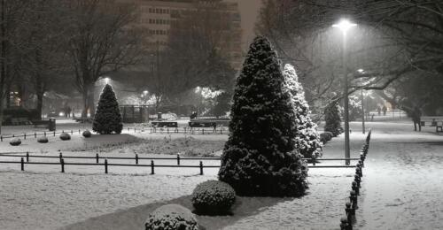 2a (1) (1) (1) (1) (1) (1) - Dziś wieczorem sypnęło śniegiem... (GALERIA ZDJĘĆ)