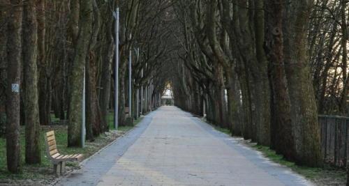 33b (1) - Niecodzienny widok. Miasto opustoszało... (ZDJĘCIA)