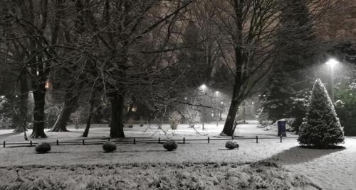 3 (1) (1) (1) (1) (1) (1) (1) (1) - Dziś wieczorem sypnęło śniegiem... (GALERIA ZDJĘĆ)