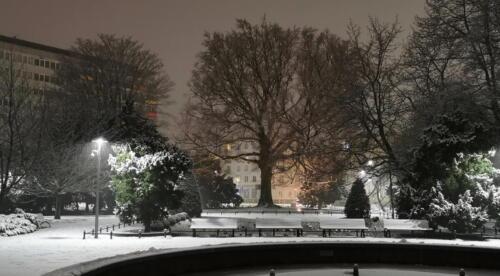 5a (1) (1) (1) - Dziś wieczorem sypnęło śniegiem... (GALERIA ZDJĘĆ)