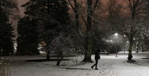 6 (1) (1) (1) (1) (1) (1) (1) (1) - Dziś wieczorem sypnęło śniegiem... (GALERIA ZDJĘĆ)