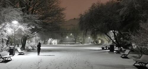 7 (1) (1) (1) (1) (1) (1) (1) (1) - Dziś wieczorem sypnęło śniegiem... (GALERIA ZDJĘĆ)