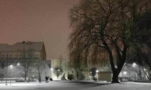 8a (1) (1) (1) (1) (1) - Dziś wieczorem sypnęło śniegiem... (GALERIA ZDJĘĆ)